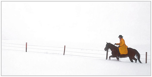 Riding the Fence Line