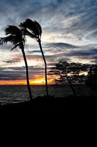 Maui 10-3