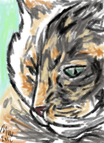 iPad drawing of one of my cats.