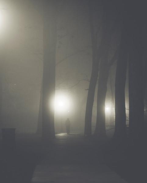 Foggy Night...