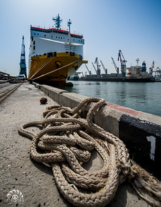 Ashdod Harbor Tour