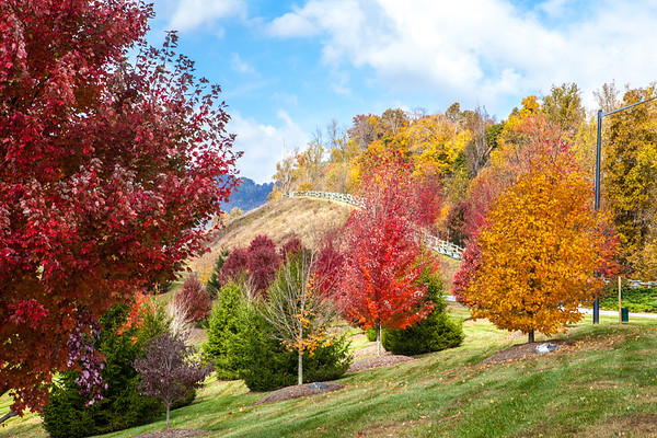 Asheville , NC