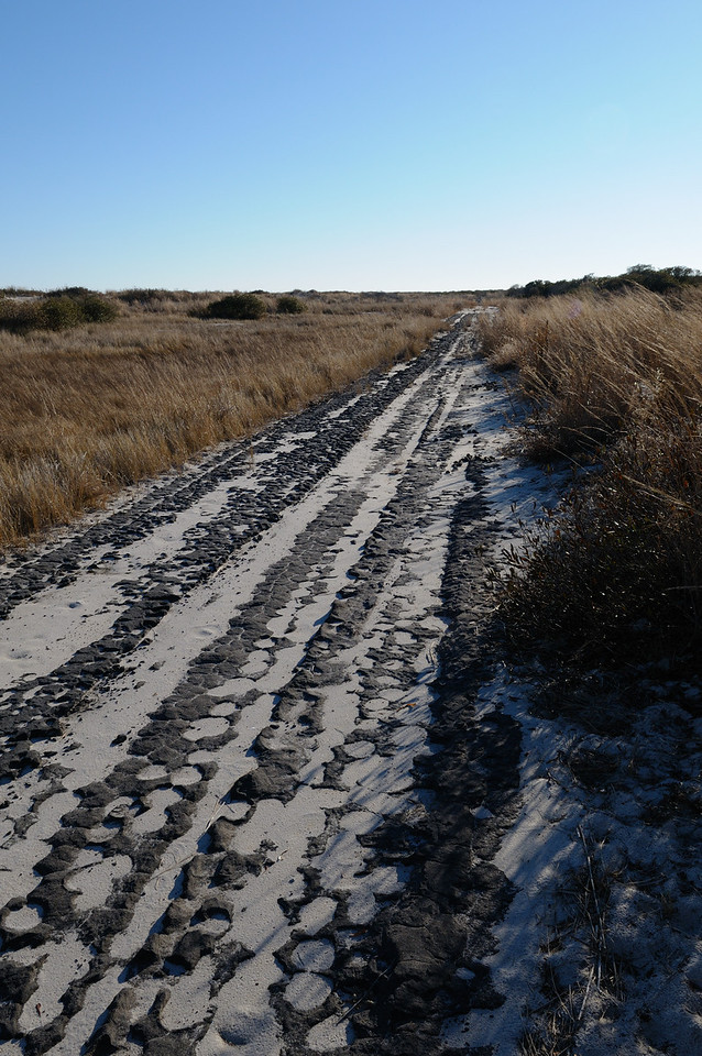 """The old """"back road"""" on Assateague.....interesting how erosion has shaped the asphalt."""