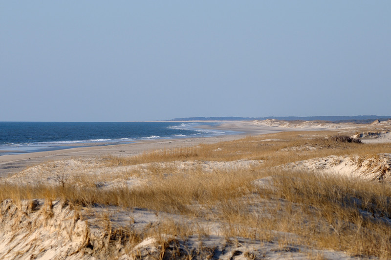 Looking into Assateague Island Virginia from the Maryland side.