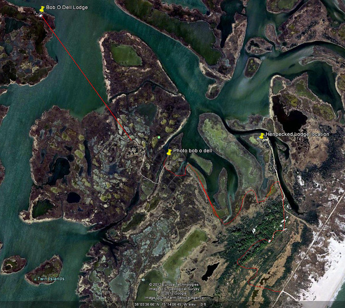 Red trail from beach shows where I walked. White trail shows me where I should have gone to get to the Hammock of trees closer to Bob-O-Dell. Straight red line shows distance to lodge from the trees, about .6 miles. Much of the marsh is impossibly soft to walk in.