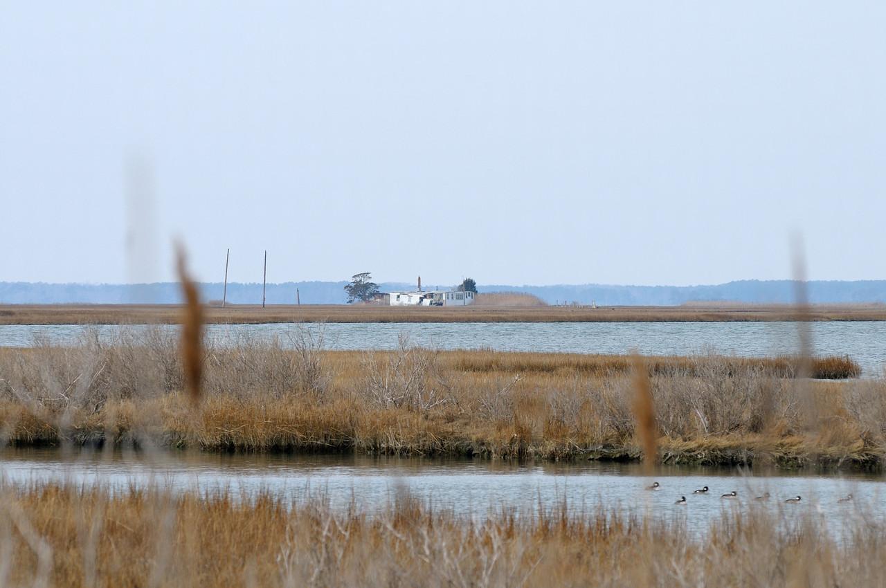 Bob-O-Dell hunting lodge on Middlemoor Island.