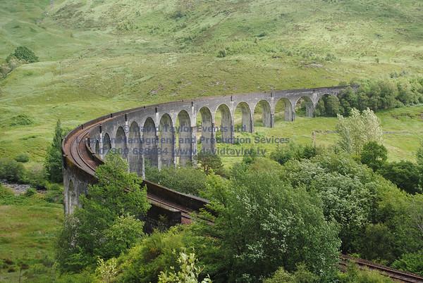 Glenfinnan viaduct (west hillside 13E) - 03