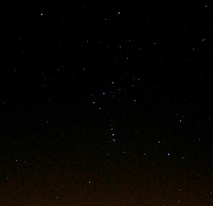 Orion, from the back garden.