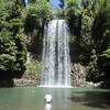 The Millea Millea Falls at the Atherton Tableland - great swimming hole