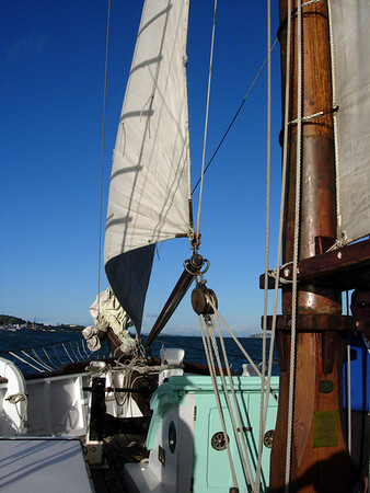Auckland Harbour Scow triip