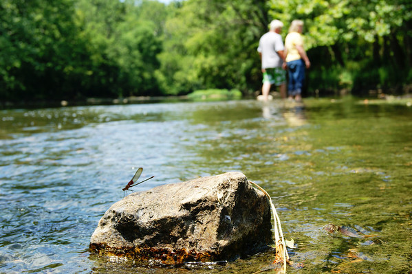 Brian and Ranotta Elbert wade in the White River at Mounds State Park while a dragonfly rests on a nearby rock<br /> <br /> Photographer's Name: Morgan  Elbert<br /> Photographer's City and State: Alexandria, IN