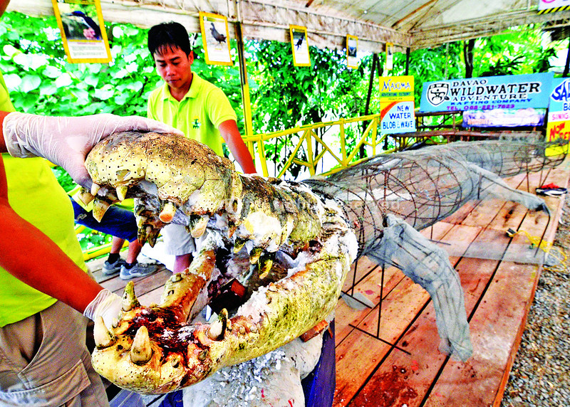 of Bunawan  Agusan del Sur have already agreed on stuffing LolongLolong Crocodile Taxidermy