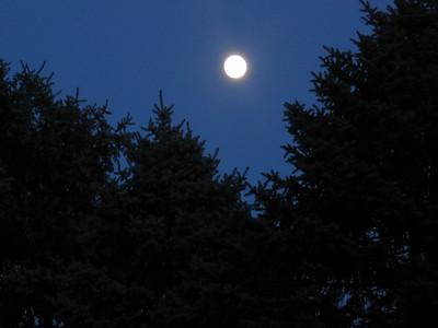 August Full Moon