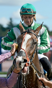 J.S.Carras/DIgitalfirstmedia.com  Under Scrutiny with jockey Angel Arroyo is cooled down at the winners circle after winning the 5th race Friday, August 29, 2014 at Saratoga Race Course in Saratoga Springs, N.Y..