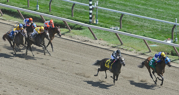J.S.Carras/DIgitalfirstmedia.com  Da Wildcat Girl (4) with jockey Angel Arroyo up overtakes Little Gidding (5) with jockey John Velazquez riding and the rest of the field to win the 1st race Friday, August 29, 2014 at Saratoga Race Course in Saratoga Springs, N.Y..