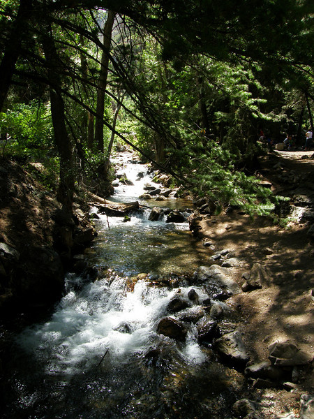 Santaquin Canyon with stream from snow melt high above.