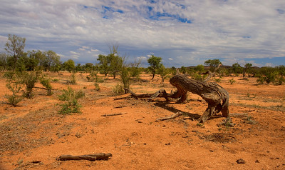 The Outback. HDR, Australia.
