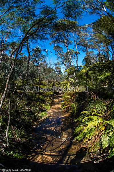 2. Scene of one of Australia's beautiful and diverse landscapes – New South Wales.