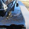 small rust spot on left front fender