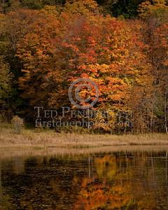 Lime Pond - Lime Pond Rd - South Royalton, VT