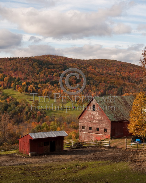 Autumn In Vermont - 2009