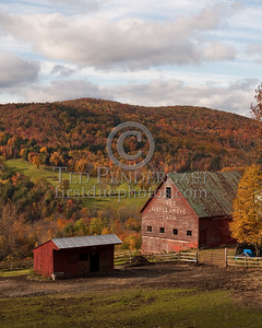 Maple Grove Farm - Allen Hill Rd - South Royalton, VT