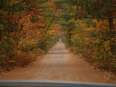 Autumn in Roscommon County