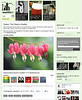 2011 06-4  The Seattlest online newspaper