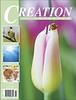 Creation Illustrated cover shot Spring 2020