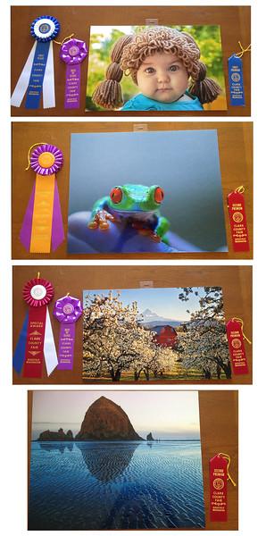 Clark County Fair 2015 Entries