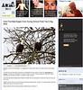 2012 3-8 LAist online newspaper