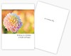 Summer 2018 Printing of SunDay Greeting cards