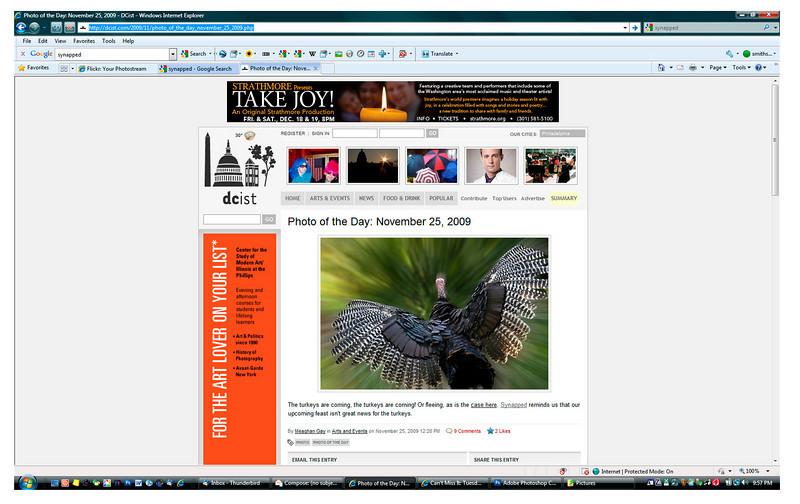 2009 11-25 DCist online newspaper