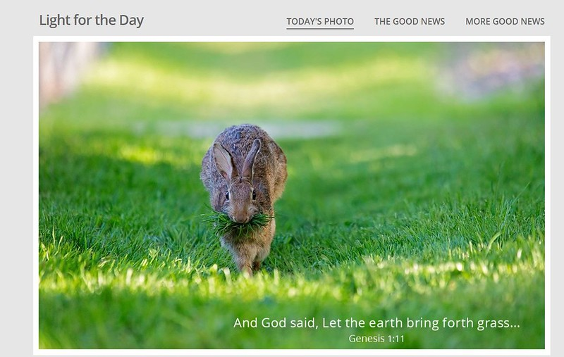 Light for the Day website