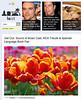 2012 5-13 LAist online newspaper
