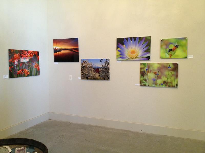 2014-06 (July) Art show at Something Big Cellars