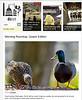 2012 3-27 DCist Online newspaper
