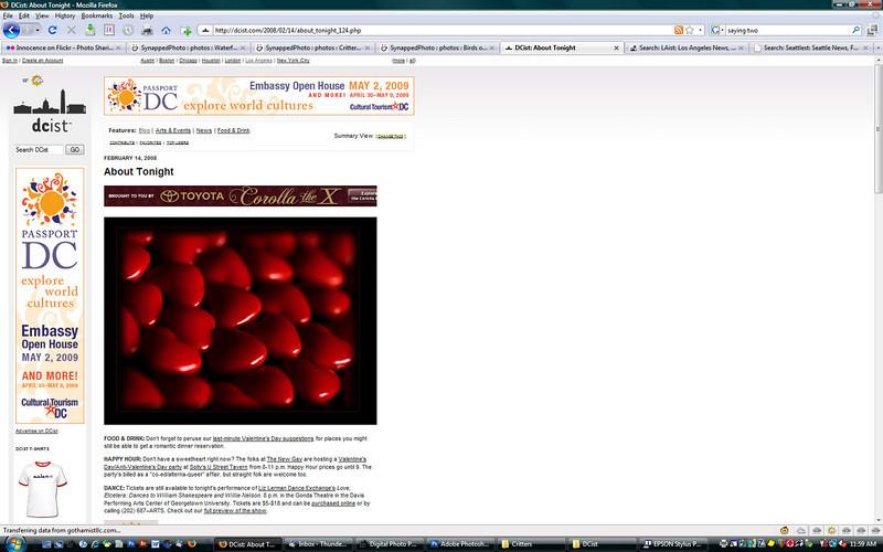 2008 2-14 DCist online newspaper