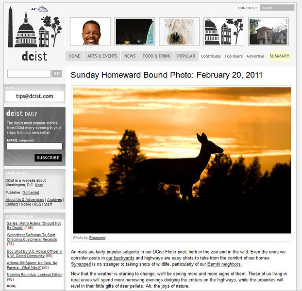 2011 02-20 DCist online newspaper