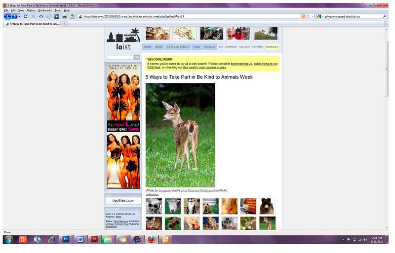 2010 05-05 LAist online newspaper