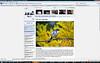 2008 11-08  LAist online newspaper