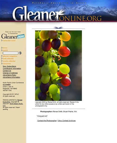 2011 10-15 Gleaner (closeup) online news