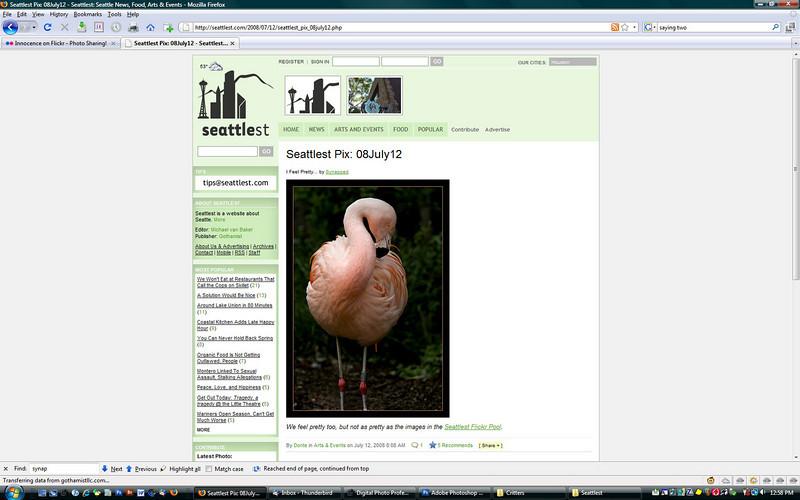2008 7-12 Seattlest online newspaper