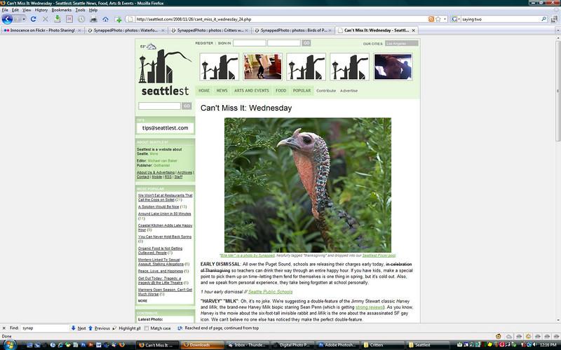 2008 11-26 Seattlest online newspaper, Thanksgiving