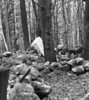 20755-1989-Smallpox-Cemetery-2