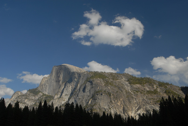 Half Dome from the Valley Floor, just outside Camp Curry