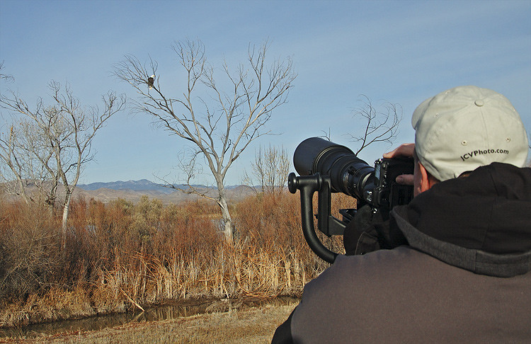 JASON VACLAVEK PHOTOGRAPHING BALD EAGLE AT BOSQUE DEL APACHE N.W.R., NEW MEXICO
