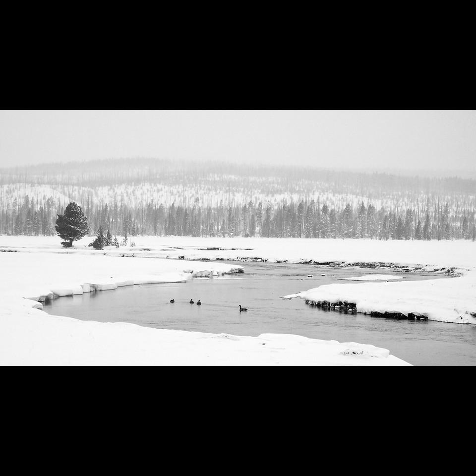 Firehole River in Winter