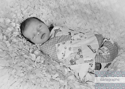 Swaddled in Quilt Full bw-