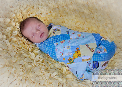 Swaddled in Quilt Full-